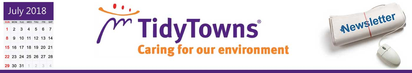 tidy towns log july 2018